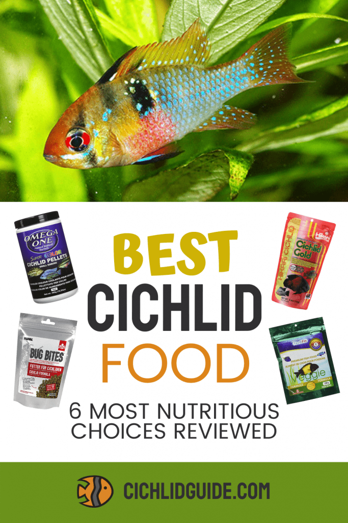 Best Cichlid Food: 6 Most Nutritious Choices Reviewed - CichlidGuide.com - If you want to make sure your cichlids are getting the food that's best for them, then give this post a read!