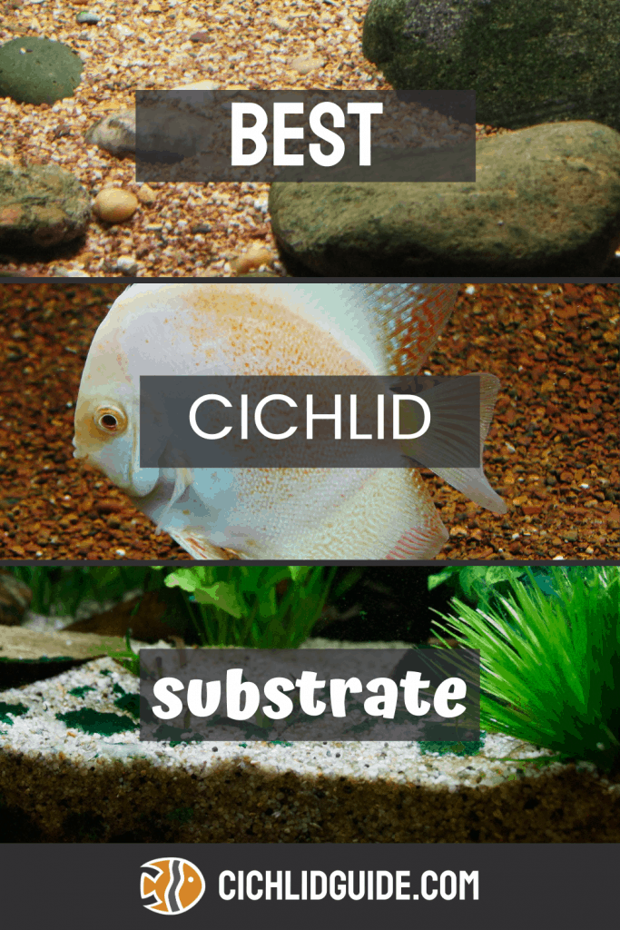Best Cichlid Substrate - CichlidGuide.com - What substrate do you need to start building your cichlid aquarium? Here are some of the best!