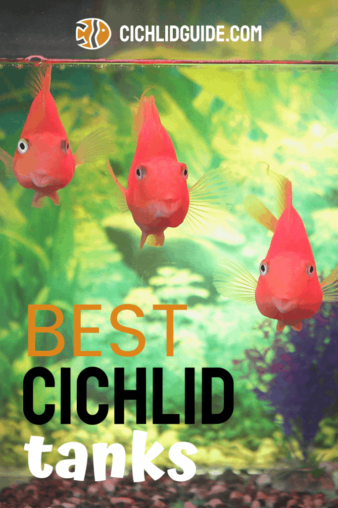 Best Cichlid Tanks - CichlidGuide.com - Choose the best cichlid tank for your pet cichlids and aquascape the perfect home.