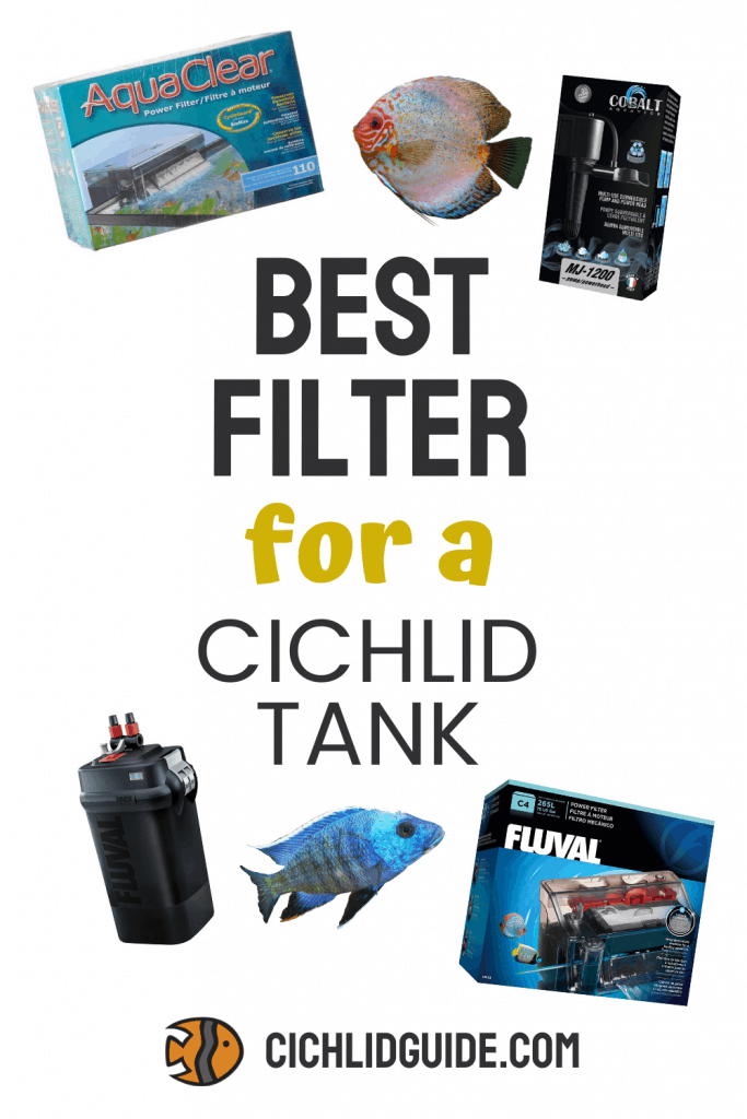 Best Filter for a Cichlid Tank - CichlidGuide.com - Keep your cichlid tank nice and clean with one of the best cichlid water filters.