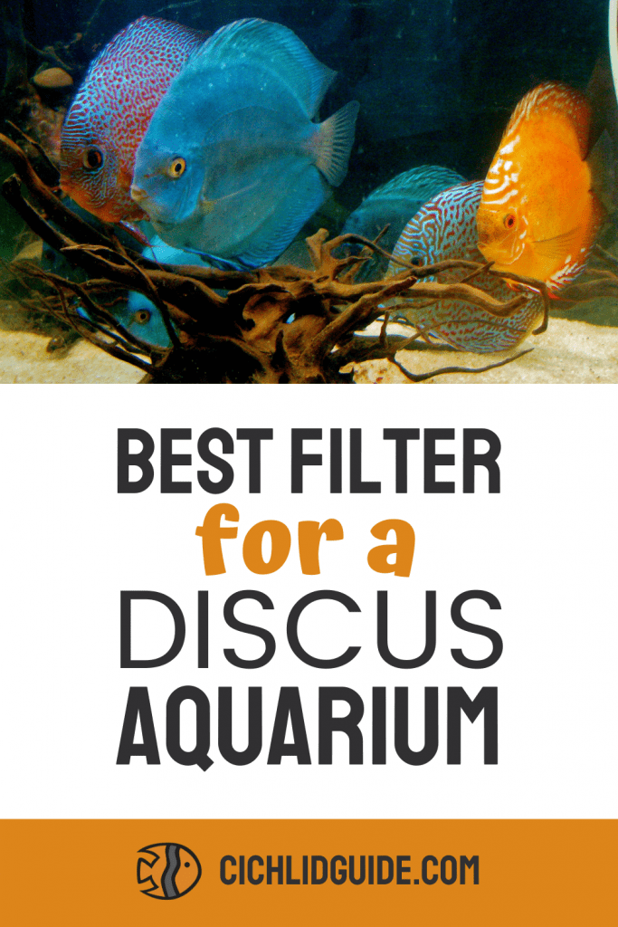 Best Filter for a Discus Aquarium - CichlidGuide.com - Keep your discus tank fresh with the best aquarium filter for discus fish.
